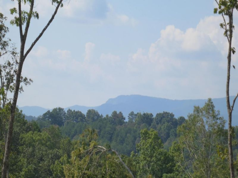 Marietta Mountain Tract : Marietta : Greenville County : South Carolina