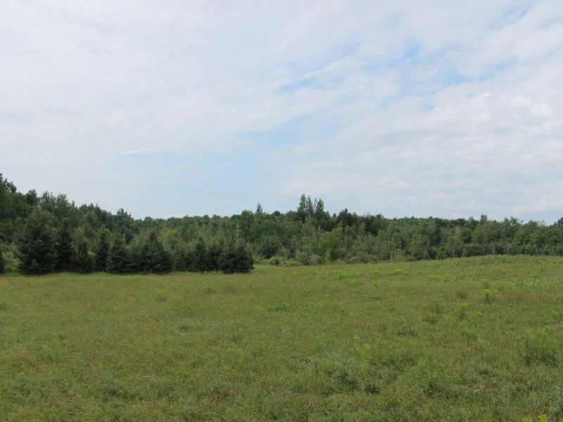 9 Acres Owner Financing Views : Hermon : Saint Lawrence County : New York