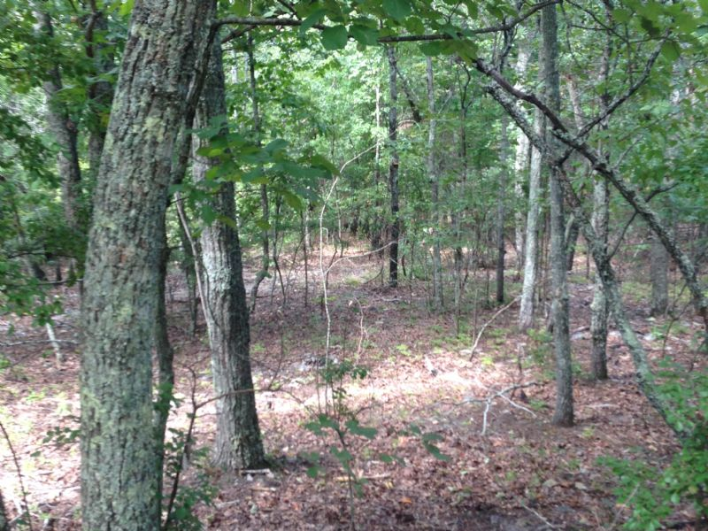 70 Acres Natural Hardwoods : Manchester : Meriwether County : Georgia