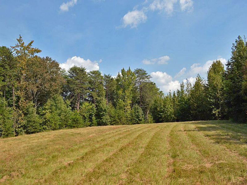 44.79 Acre Recreational Tract : Union : Union County : South Carolina