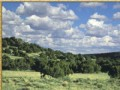 Woodland Valley Ranch Tract  815