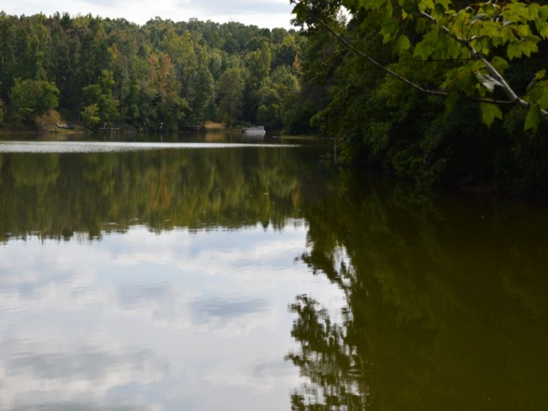 10.23 Acres With Pond In Walnut Gro : Enoree : Spartanburg County : South Carolina