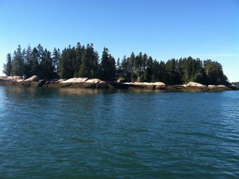 Mink Island : Beals : Washington County : Maine