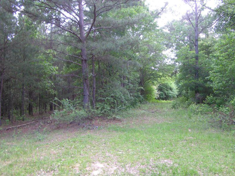 Black Rock 34 Acres : Honoraville : Crenshaw County : Alabama