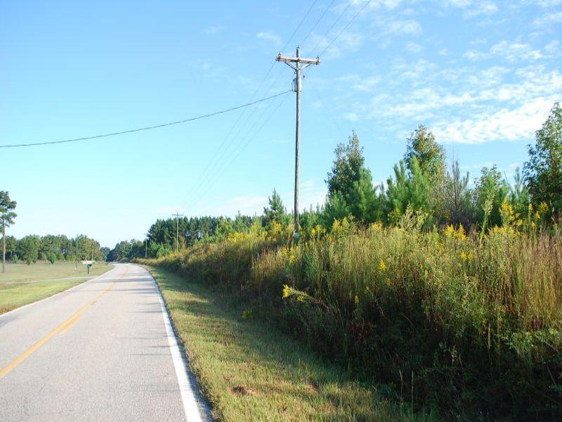 45+/- Acres Recreational/residentia : Union : Union County : South Carolina