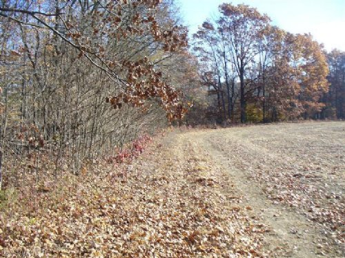 Paw Paw River 54.4 Acres : Lawrence : Van Buren County : Michigan