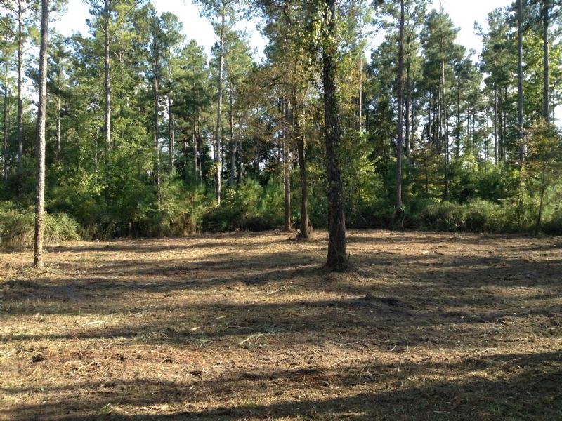 5 Acres Close To Everything : Kingsland : Camden County : Georgia