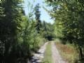 5 Acres Near Salmon River Private