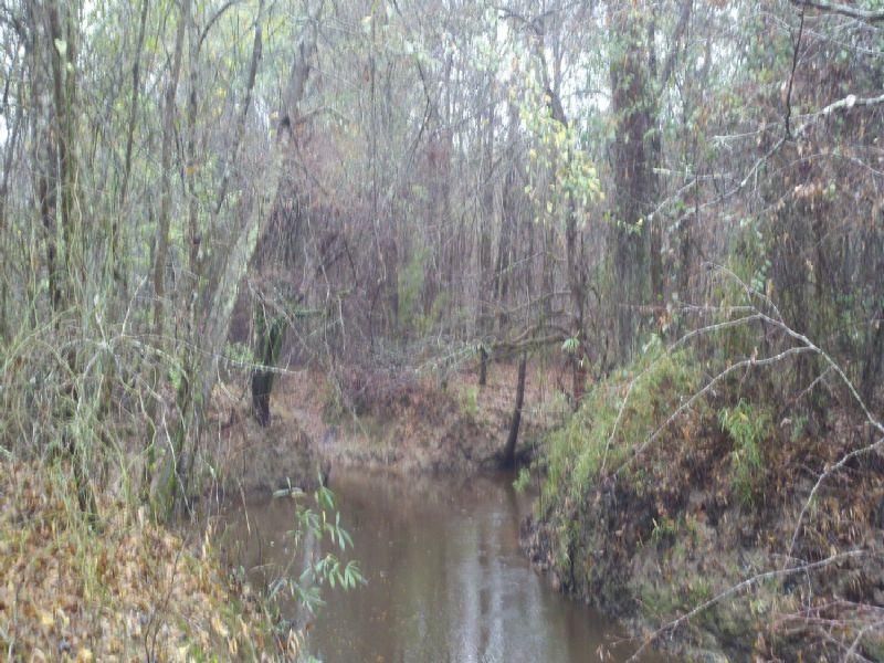 22111hb066 Hodge : Farmerville : Union Parish : Louisiana