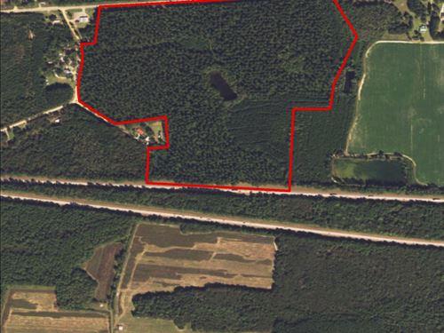 100+/- Acres Hwy 46 : Pembroke : Bulloch County : Georgia