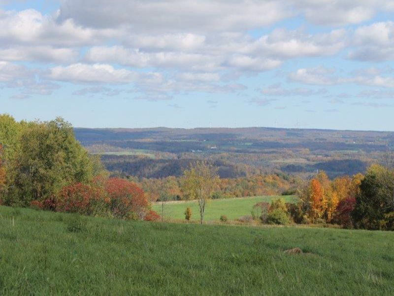 45 Acres Farmland Creeks Views : Newport : Herkimer County : New York