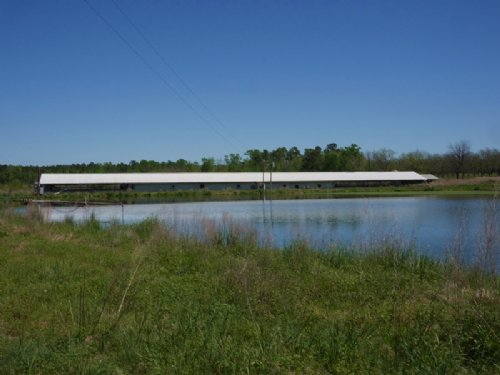 90+/- Acres Banks Swine Farm : Statesboro : Bulloch County : Georgia