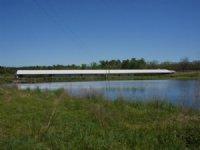 90+/- Acres Banks Swine Farm