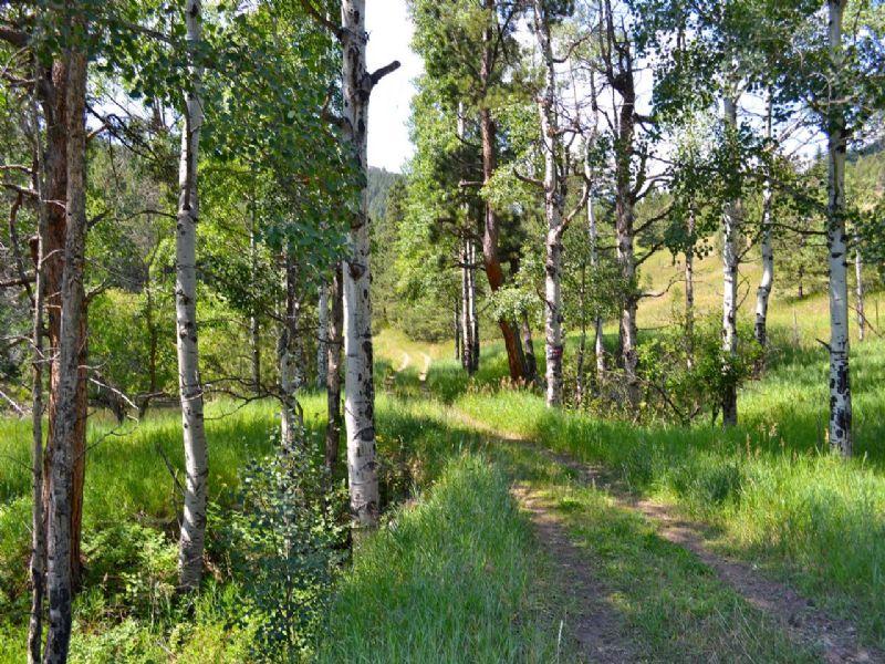 Circle Lazy R Ranch : Evergreen : Jefferson County : Colorado
