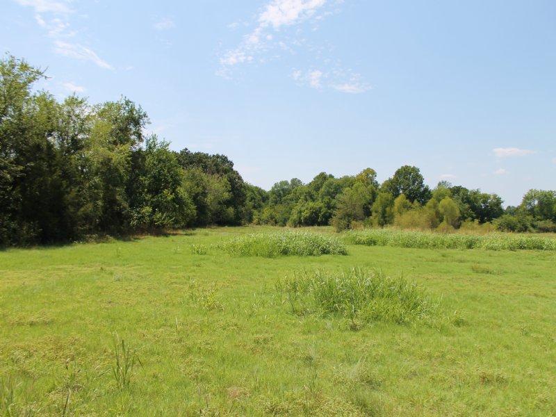 Mccoy Creek Ranch Texas Terms : Clarksville : Red River County : Texas