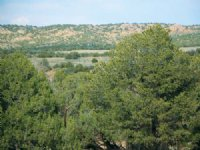 Arizona Wilderness Ranch $237 Mo : Saint Johns : Apache County : Arizona