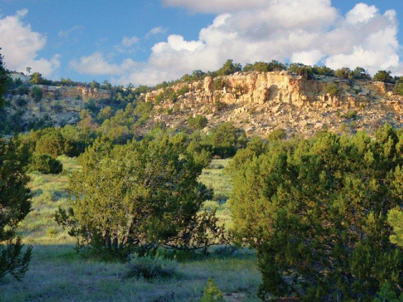Arizona Wilderness Ranch 237 Mo Farm For Sale Saint