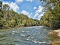 84 Acres On The Broad River