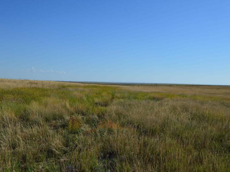 400 Acres Crp : Granada : Prowers County : Colorado