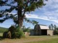 73 Ac Farm, Fenced, Pasture, Creek