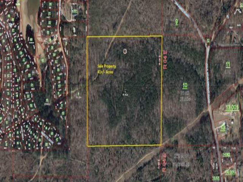 41+/- Acres Timberland : Alpine : Talladega County : Alabama