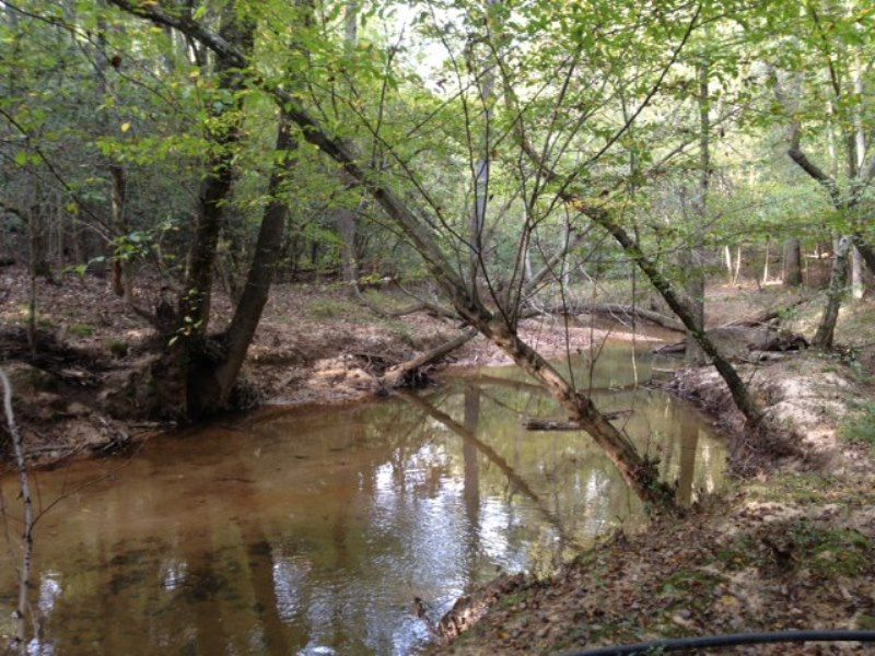 Griffin Mill Road Tract W/ Home : Piedmont : Greenville County : South Carolina