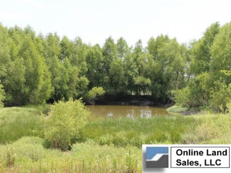 8.96 Acre Mccoy Creek. Terms : Clarksville : Red River County : Texas