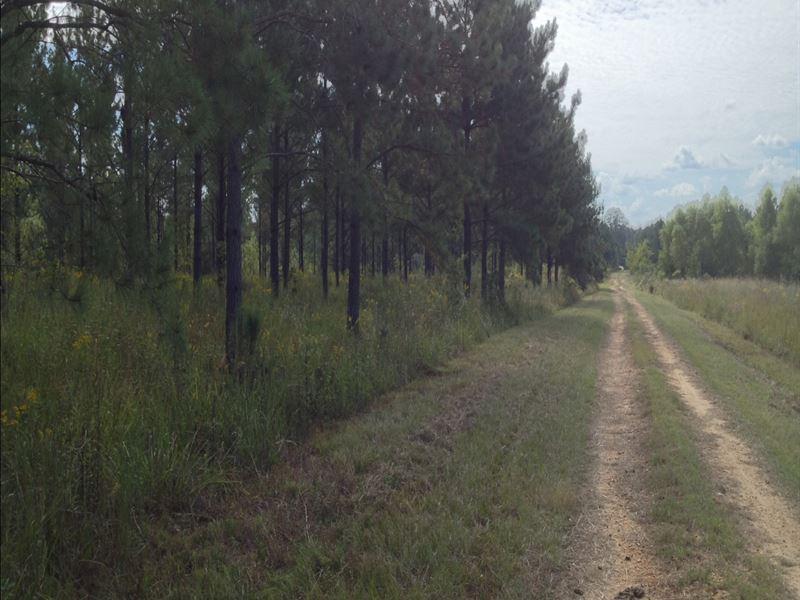 9-003 Mohawk Plantation : Union Springs : Bullock County : Alabama