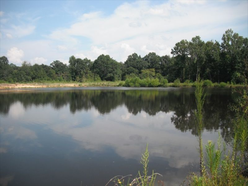 10 Miles From Macon : Macon : Bibb County : Georgia