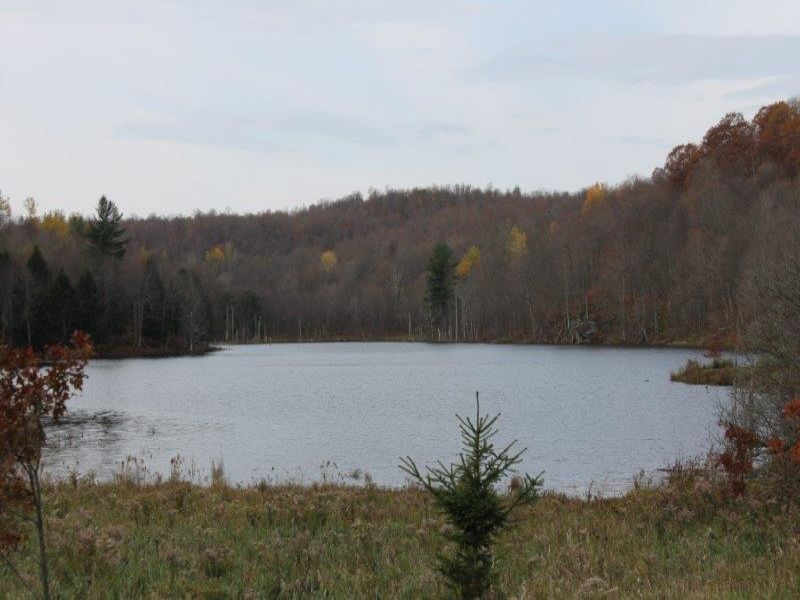 Waterfront 6 Acres Owl Pond : Hermon : Saint Lawrence County : New York