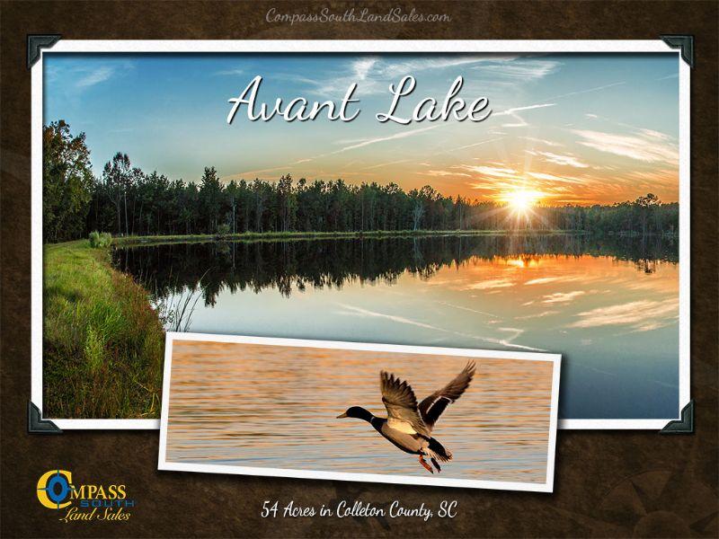 Avant Lake : Walterboro : Colleton County : South Carolina