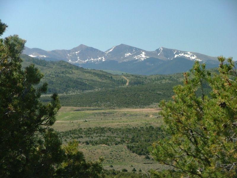 43 Acre San Luis Valley. Terms : Alamosa : Costilla County : Colorado