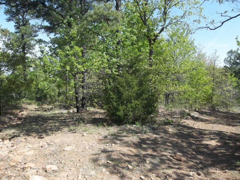 6.65 Acre Pine Mountain Ranch.terms : Wilburton : Latimer County : Oklahoma