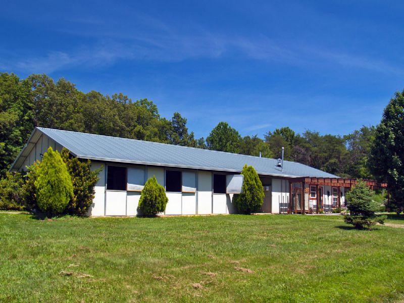 Dragon Hill Farm : Barboursville : Orange County : Virginia
