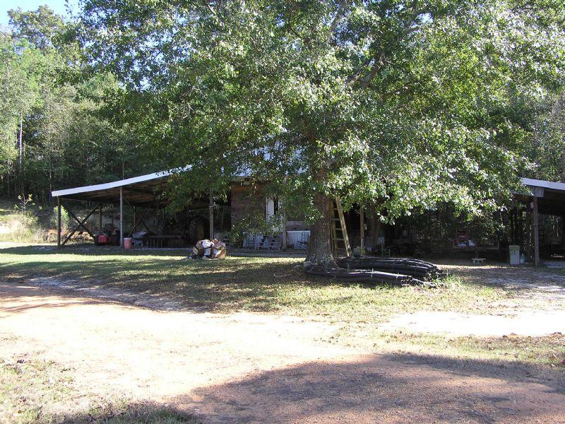 Highland Home 57 Acres : Highland Home : Crenshaw County : Alabama