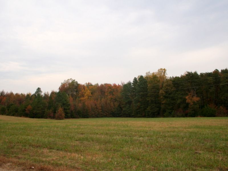 22 Beautiful Acres In Beaverdam : Beaverdam : Hanover County : Virginia