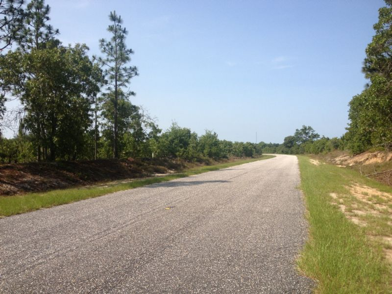 28 Acres- $1,200/acre : Bethune : Kershaw County : South Carolina