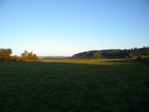 Farmland With Riverfrontage : Elma : Grays Harbor County : Washington