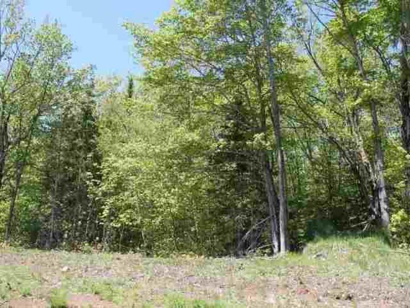 Lot 19&20 Pilgrim River Mls#1073586 : Houghton : Houghton County : Michigan