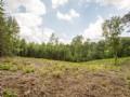 Gentleman Farming Land