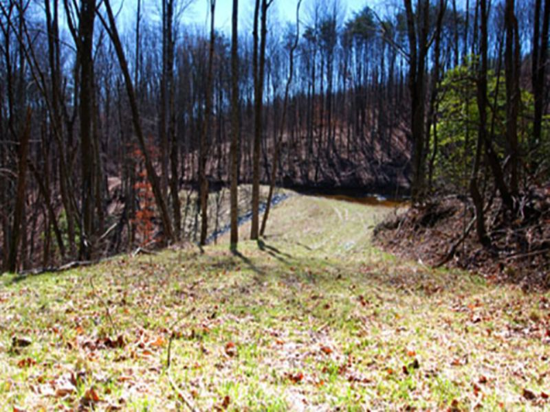 10+ Acres On Signal Mt - Lot 19 : Signal Mountain : Sequatchie County : Tennessee
