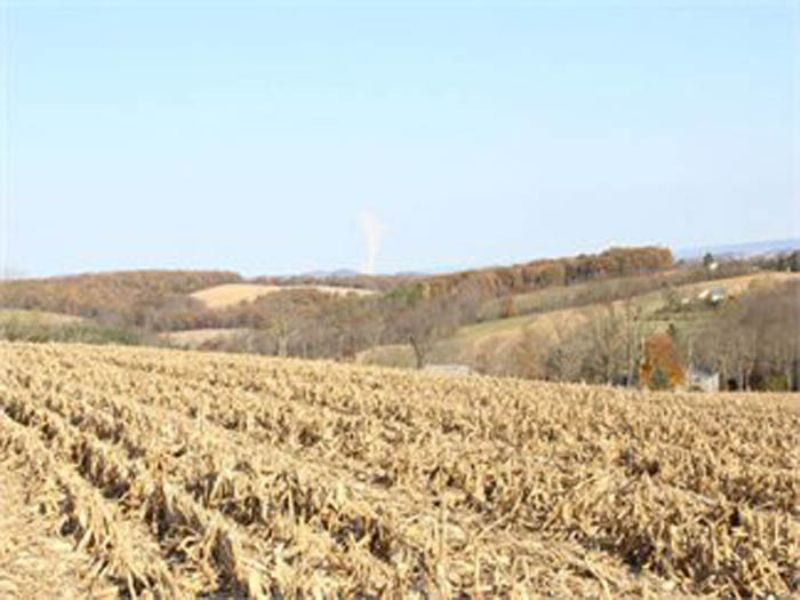 6.7 Acres Land For Auction (parcel : Bloomsburg : Columbia County : Pennsylvania
