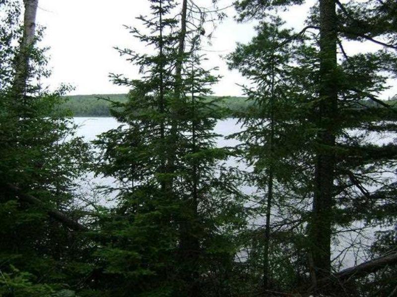 Tbd W Cable Lake Road  Mls#1076850 : Amasa : Iron County : Michigan