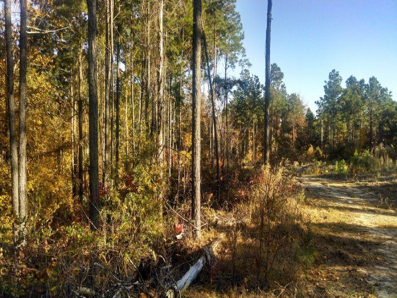 22021sb003 River Hills 3 : Columbia : Caldwell Parish : Louisiana