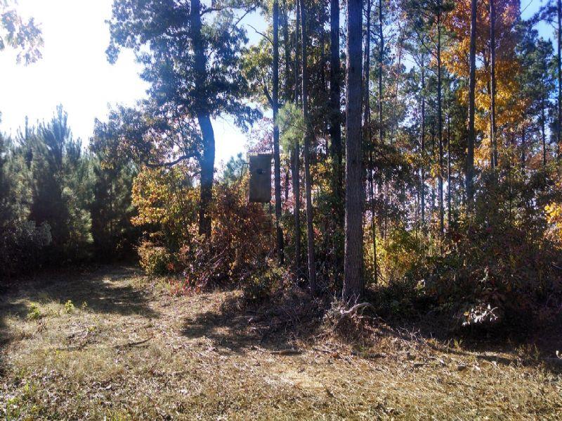 22021sb004 River Hills 4 : Columbia : Caldwell Parish : Louisiana