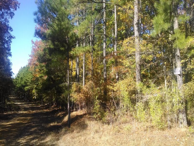 22021sb012 River Hills 12 : Columbia : Caldwell Parish : Louisiana