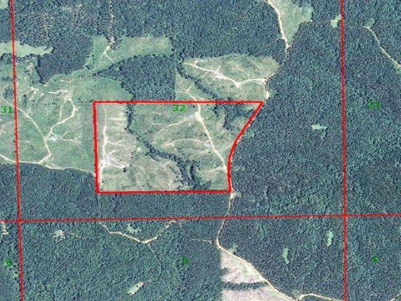 Barlow - 111 Acres : Hazlehurst : Copiah County : Mississippi