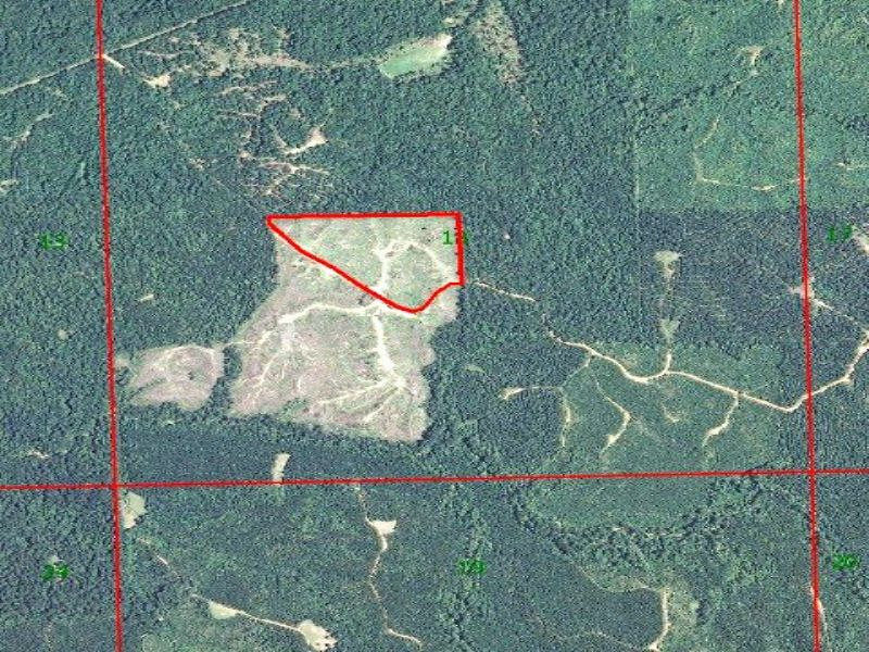 Crystal Springs 21.45 Acres : Crystal Springs : Copiah County : Mississippi