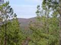 Great Location Near Ouachita N. F