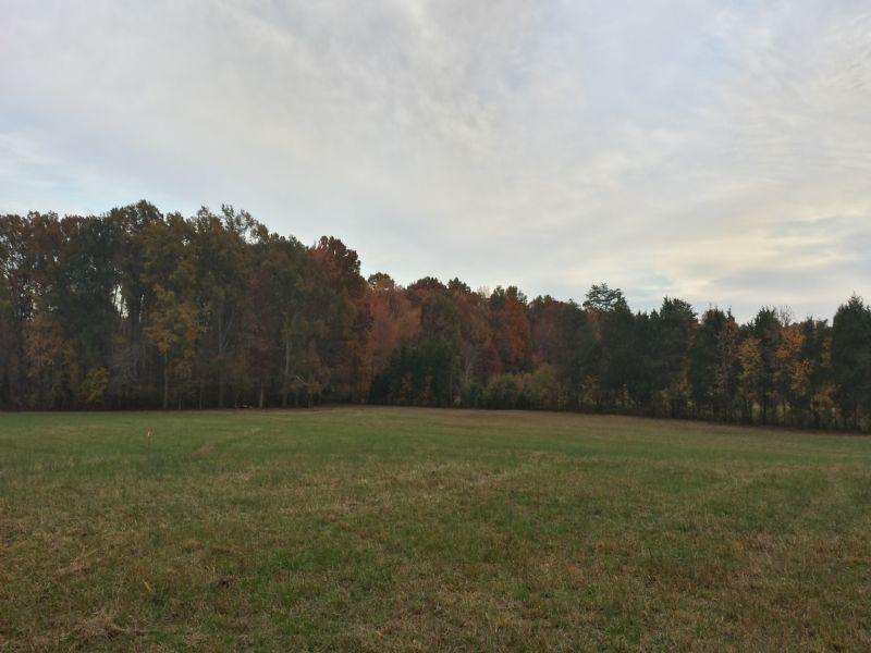 28.5 Acres - Hermitage Meadows : Stafford : Stafford County : Virginia